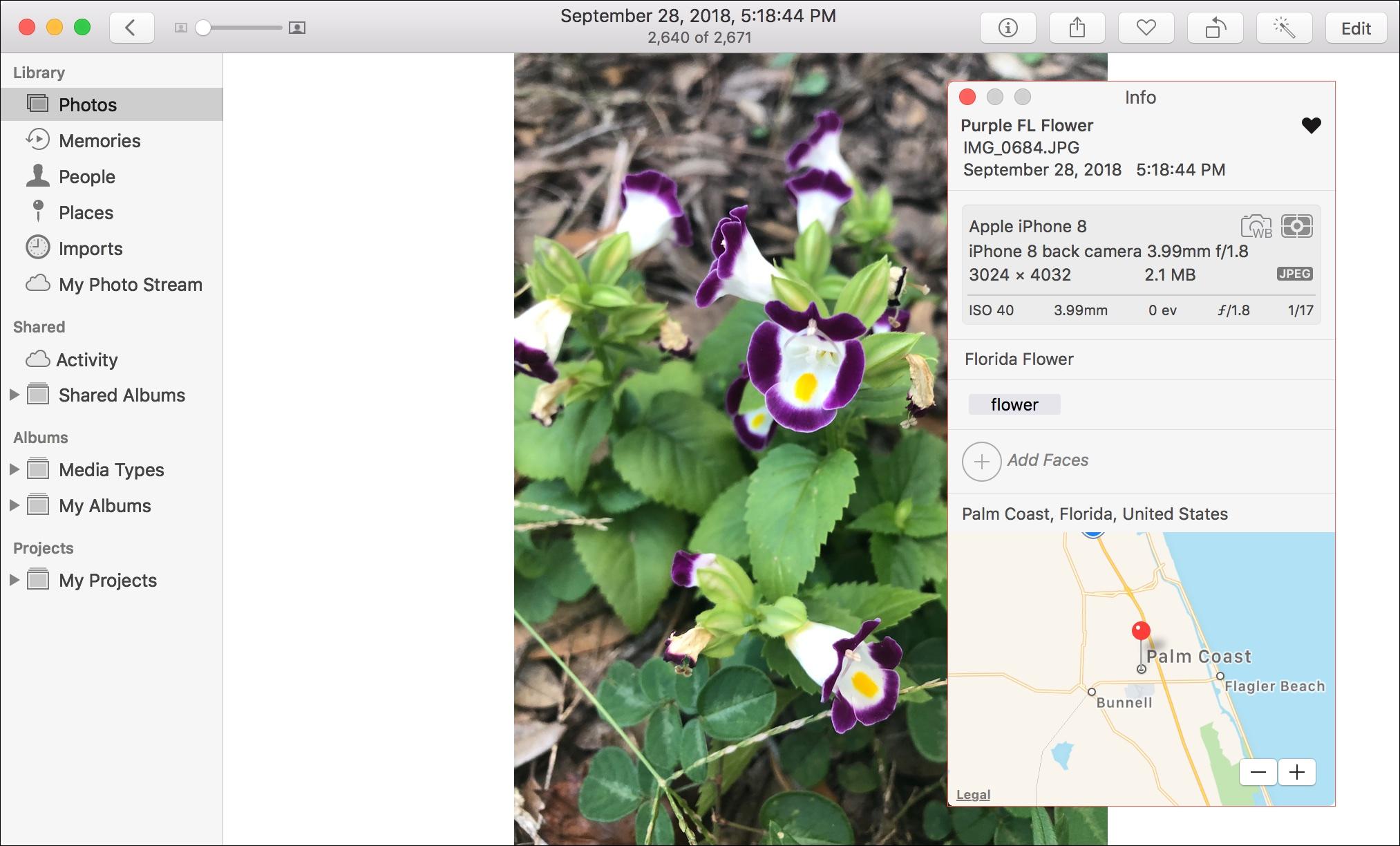 photo metadata mac