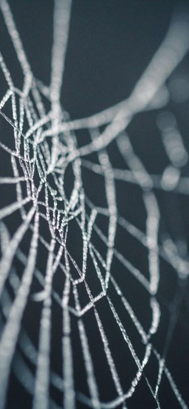 Halloween iphone wallpaper spider web idownloadblog nicolas picard