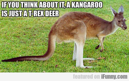 If You Think About It, A Kangaroo Is Just A...