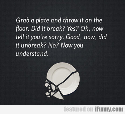 Grab A Plate And Throw It On The Floor...