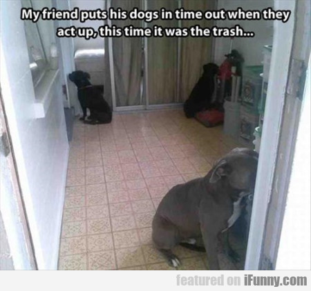 My Friend Puts His Dogs In Time Out
