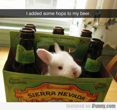 I Added Some Hops To My Beer