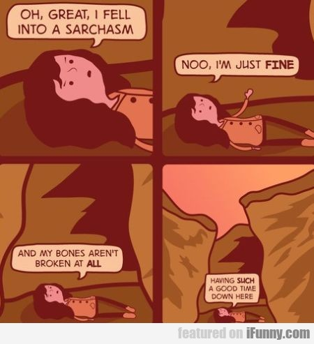 Oh Great, I Fell Into Sarchasm