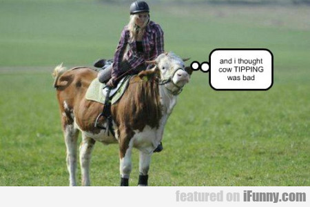 And I Thought Cow Tipping