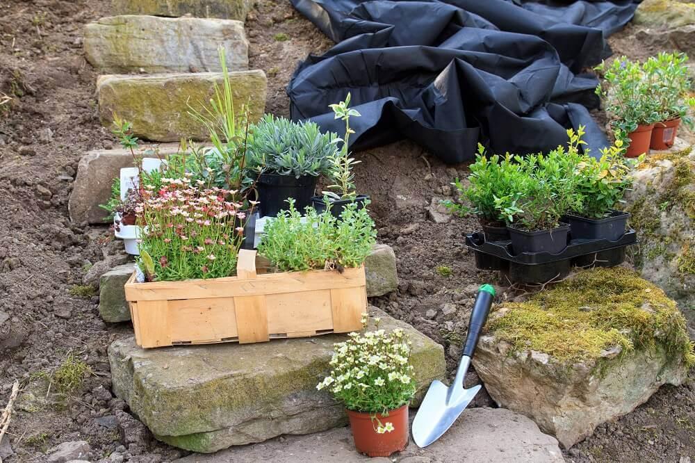 Rock Garden Ideas | Garden Rocks | Garden Rock Plants on Small Garden Ideas With Rocks id=68806