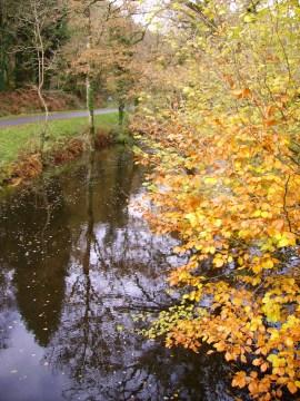 Le Scorff à l'automne