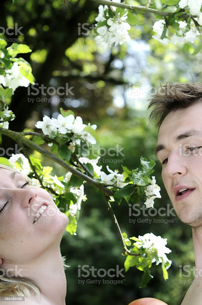 Royalty Free Adam And Eve Pictures, Images and Stock ...