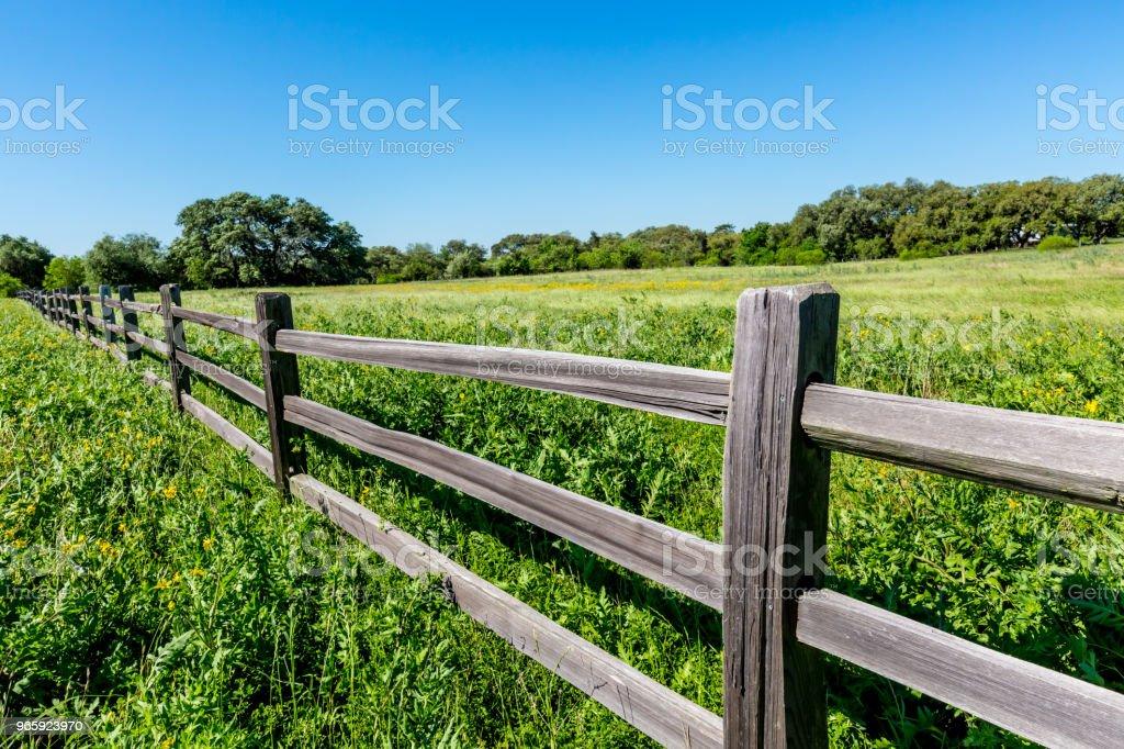 https www istockphoto com fr photo une vieille cl c3 b4ture en lisse en bois dans un champ de texas gm965923970 263581960