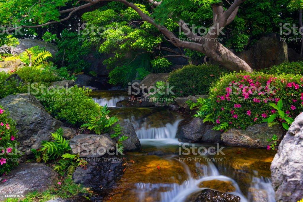 https www istockphoto com fr photo beau jardin japonais avec petite cascade et fleurs de rhododendron floraison gm1153654970 313396924
