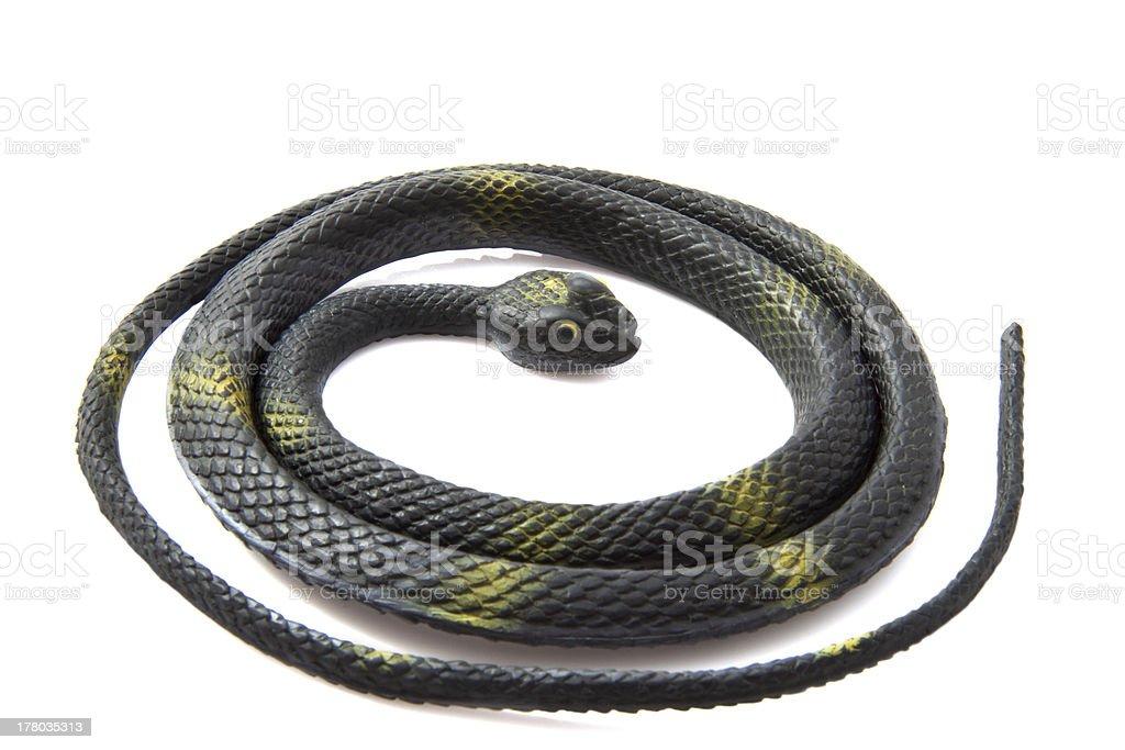 Best Information Snake Mamba Black
