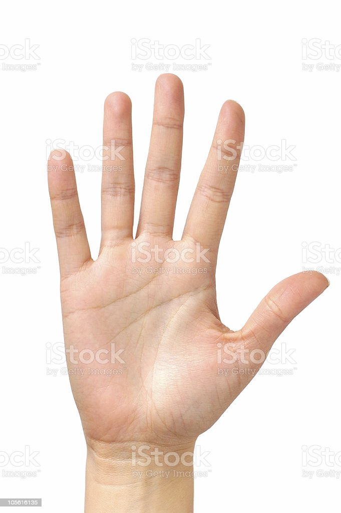 Best Palm Of Hand Stock Photos Pictures RoyaltyFree