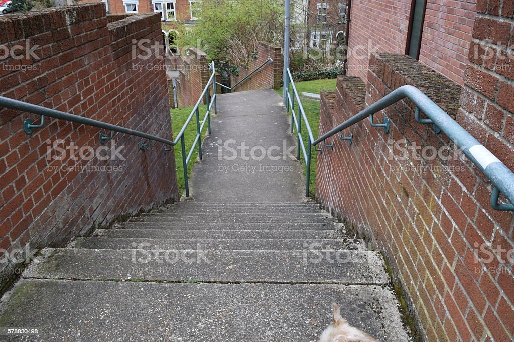 Concrete External Outside Stairs Steps Stock Photo Download   Metal Steps For Outside   Backyard   Steel Construction   Easy   Utility   Outdoors