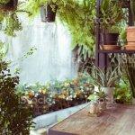 Dekoration Wohnzimmer Interieur Grunen Eco Umwelt Mit Nad Baum Pflanzen Stockfoto Und Mehr Bilder Von Abstrakt Istock