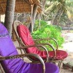 Foto De Imagem Do Assento De Bambu Do Jardim De Vime Confortavel Cadeiras Sunespreguicadeiras Com Os Coxins Vermelhos Roxos Na Praia Arenosa Tropical Do Paraiso Ferias De Ferias Ao Lado Do Mar