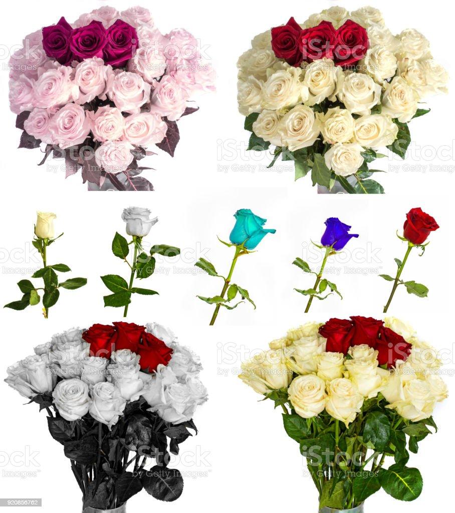 https www istockphoto com fr photo nombreuses belles roses sans fond fleurs roses isolement en grand nombre gm920856762 252977329