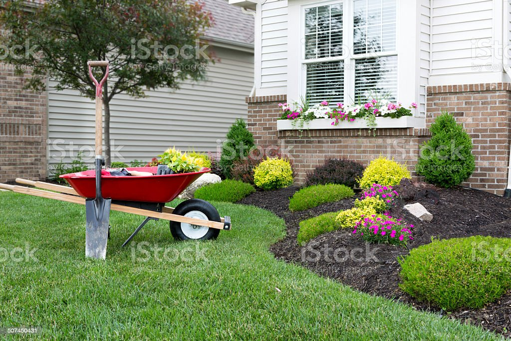 3 Landscaping Tips from Someone With Experience