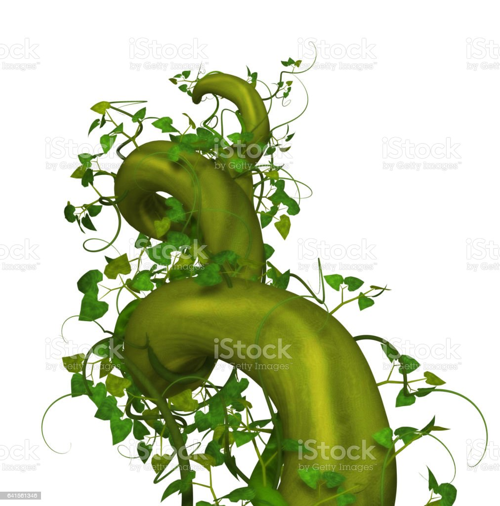 Best Beanstalk Stock Photos, Pictures & Royalty-Free ...