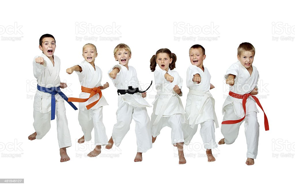 Karate Kick Picture