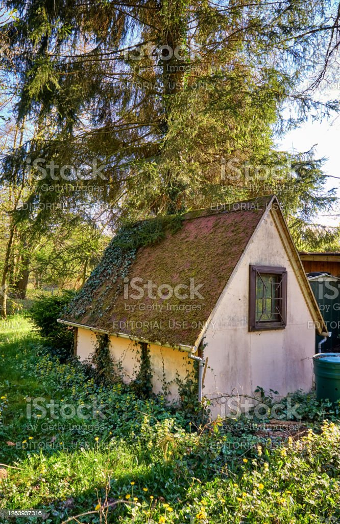 If you don't have a van but you envy the #vanlife, rent the forest cottage teardrop trailer and take to the woods for a private getaway. Small Cottage In The Forest Under A Big Tree Stock Photo Download Image Now Istock