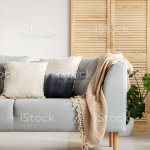 Vertical View Of Modern Living Room With Grey Sofa And Beige Carpet Stock Photo Download Image Now Istock