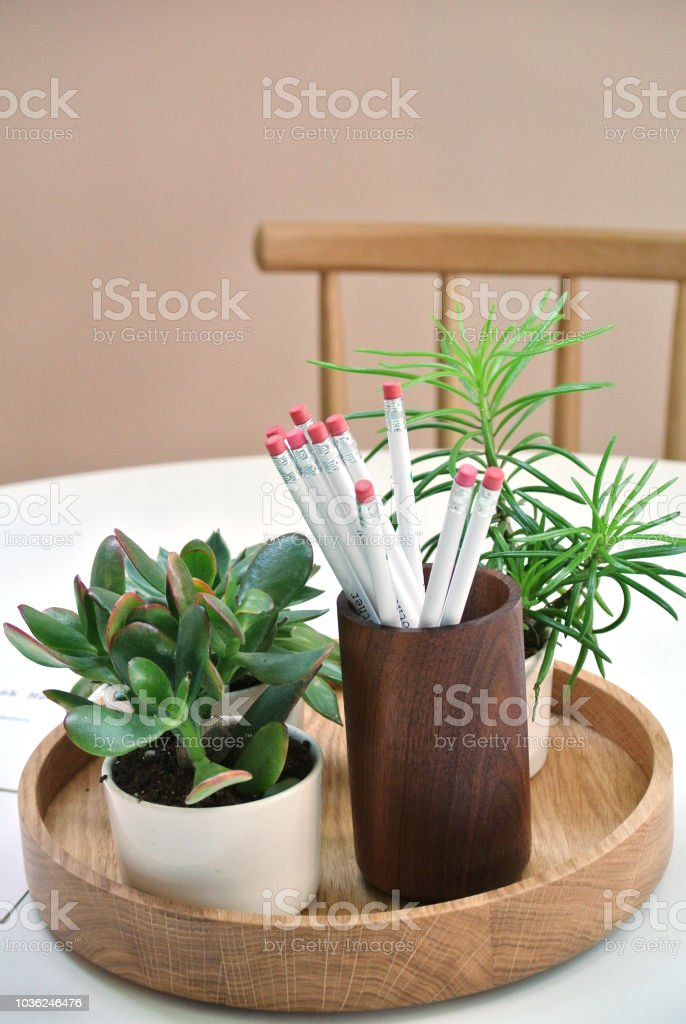 wooden table with small decorative plants and office items stock photo download image now istock