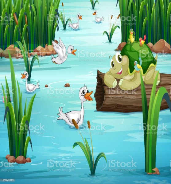 Royalty Free Duck Pond Clip Art Vector Images