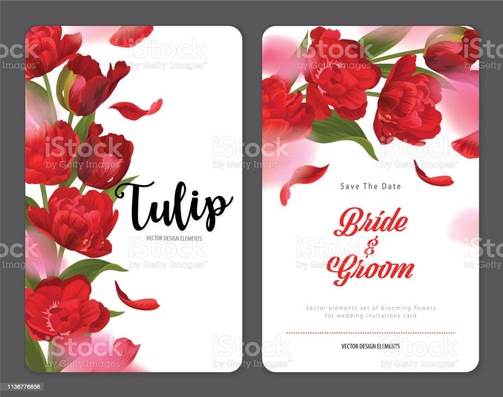 red wedding invitation 546 free vectors to download freevectors
