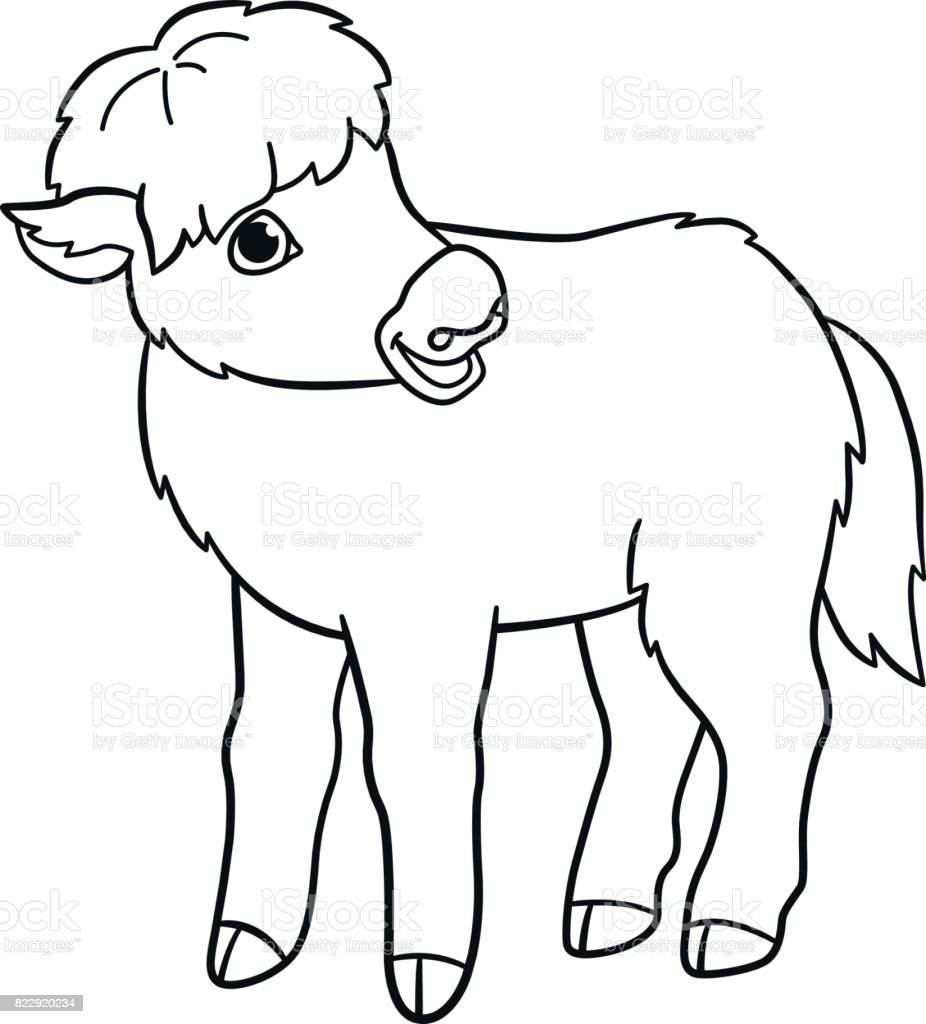 Coloring Pages Little Cute Baby Yak Stock Vector Art More Images