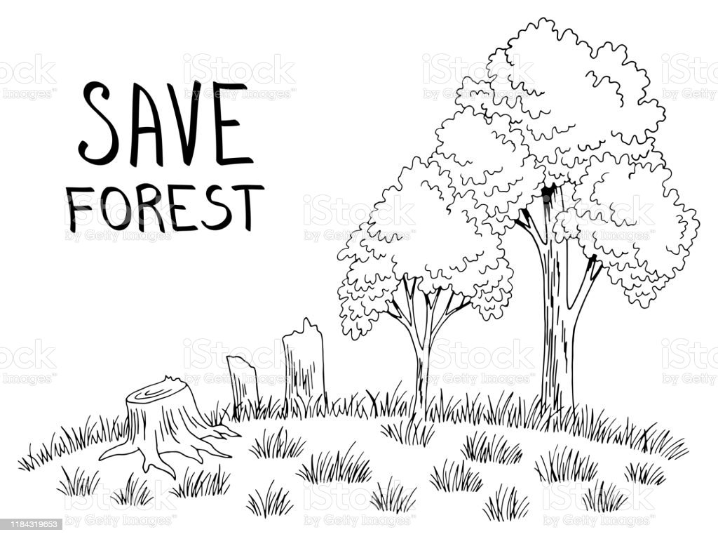 The default values for the parameters controlling the size of the trees (e.g. 371 Deforestation Drawing Illustrations Clip Art Istock