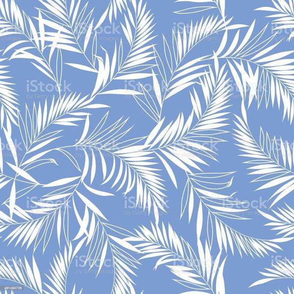 양치식물 패턴 0명에 대한 스톡 벡터 아트 및 기타 이미지 - iStock