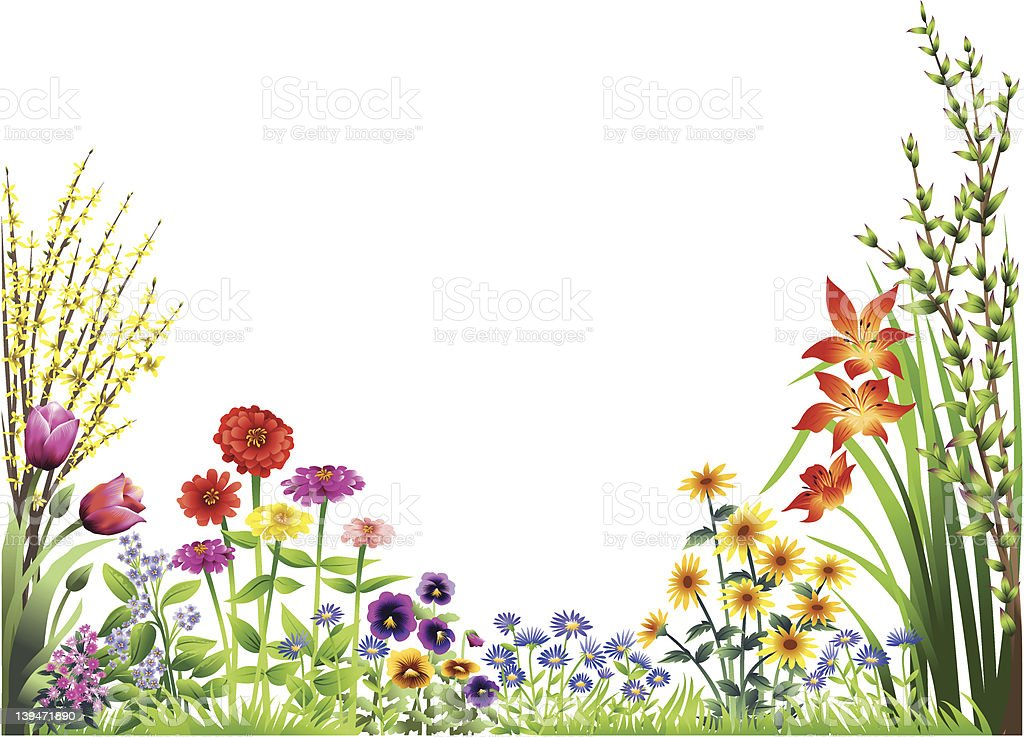 Flower Garden Stock Vector Art & More Images Of Beauty