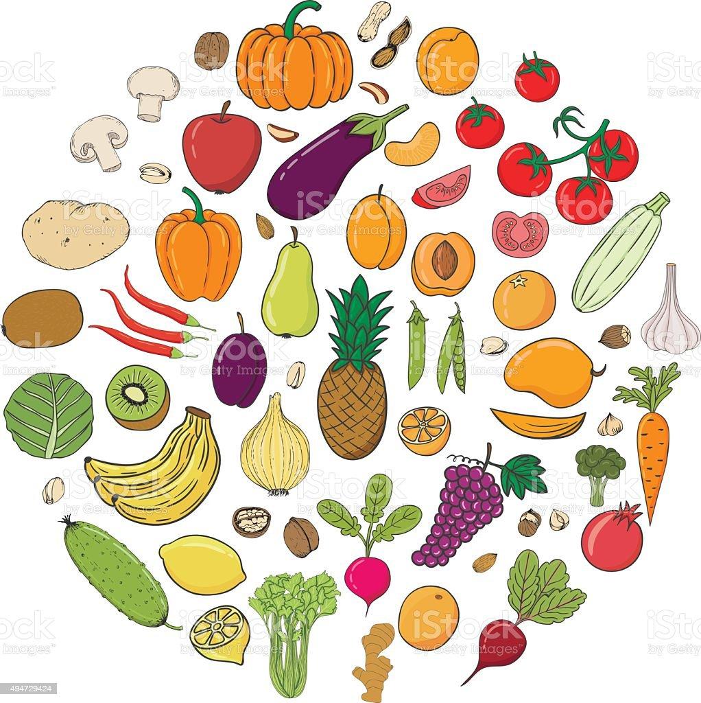 Zeichnung Doodle Obst Und Gemse Mit Namen Stock Vektor