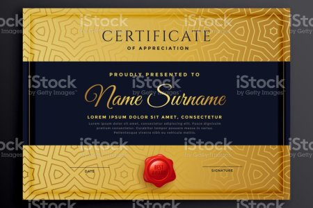 Premium Golden Certificate Template Design Stock Vector Art   More     premium golden certificate template design royalty free premium golden certificate  template design stock vector art