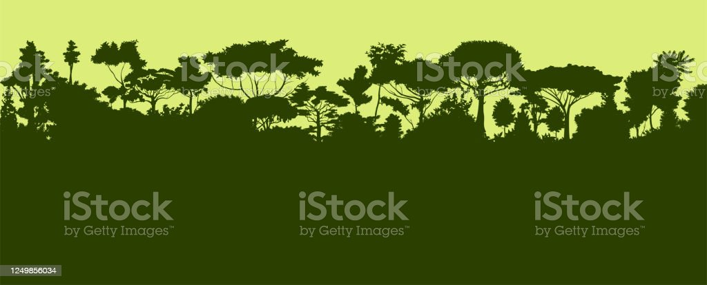 They're beautiful natural wonders where we can encounter species of plants and animals we won't see anywhere else in the world, but they also play a vital role in he. Rainforest Silhouette Jungle Forest Green Landscape Background Vector Illustration Stock Illustration Download Image Now Istock