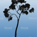 Tree Silhouette Stock Illustration Download Image Now Istock