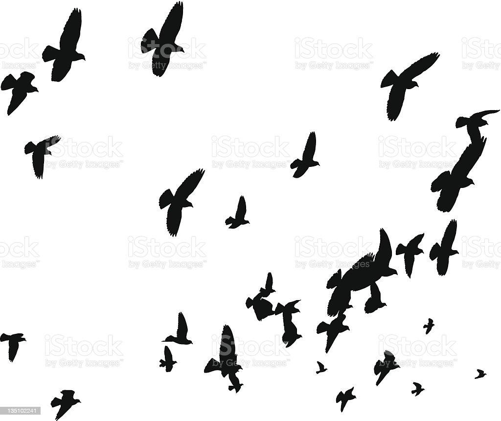 Flying Butterfly Silhouette Clip Art