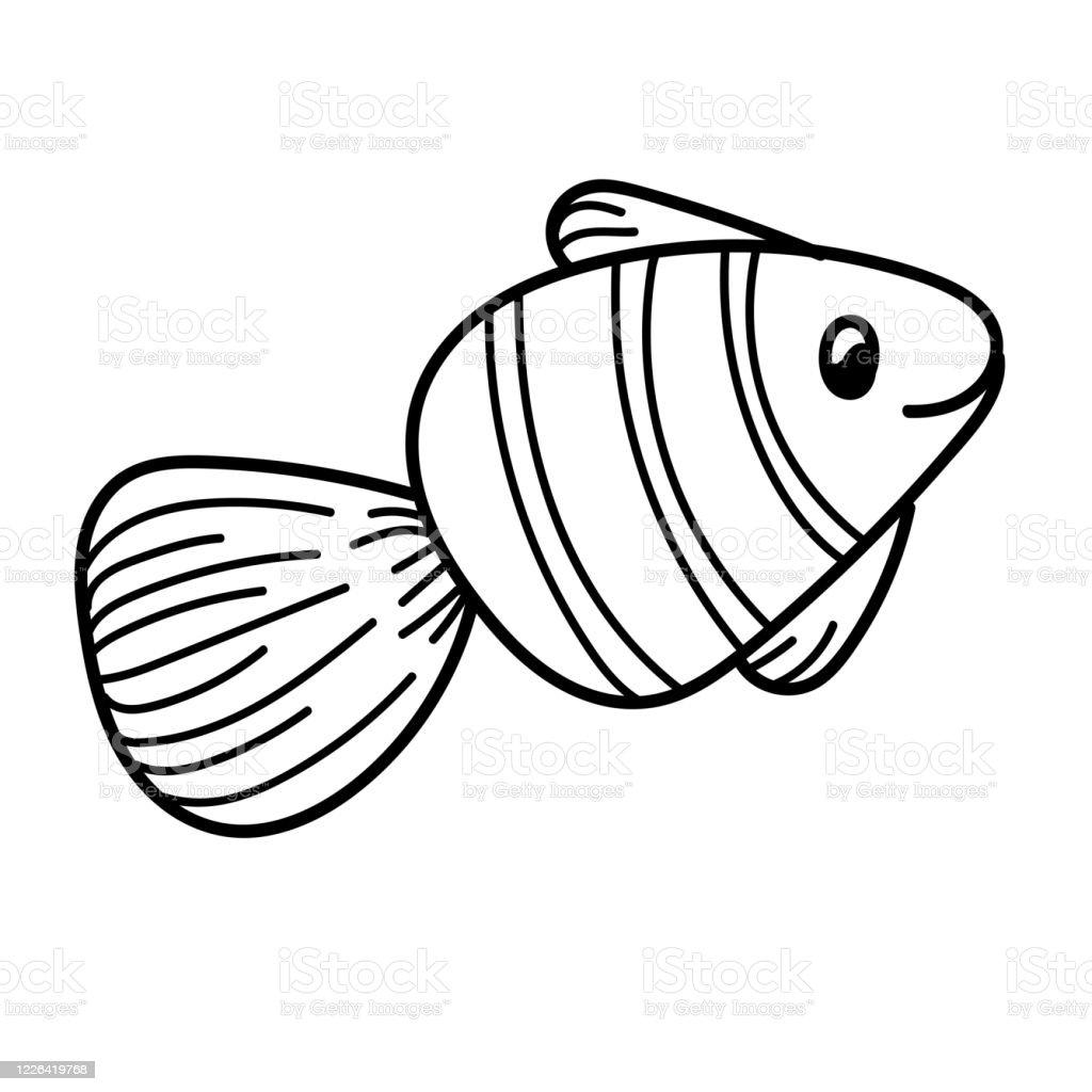 element vectoriel dessin noir et blanc dun habitant marin mignon petit poisson vecteurs libres de droits et plus d images vectorielles de aquarium etablissement pour animaux en captivite istock