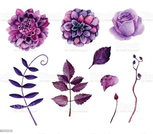 Watercolor Purple Flowers Vector Stock Vector Art More