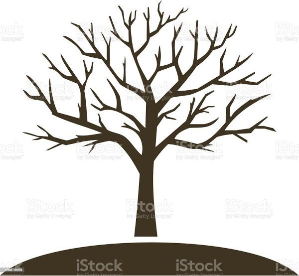 Winter Tree Stock Vector Art More Images of Bare Tree