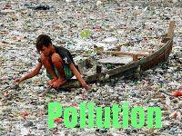 pollution de l'environnement féminisation hormones de croissance pillule