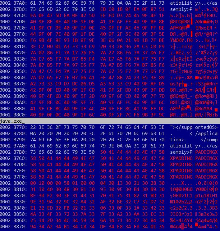 kbot virus pic 05 - Файловый вирус KBOT