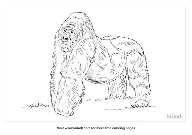 Mountain Gorilla Coloring Pages  Free Animals Coloring Pages  Kidadl