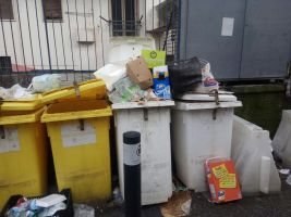 rifiuti monnezza immondizia (4)
