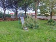 aversa area standard via garofano albero (2)