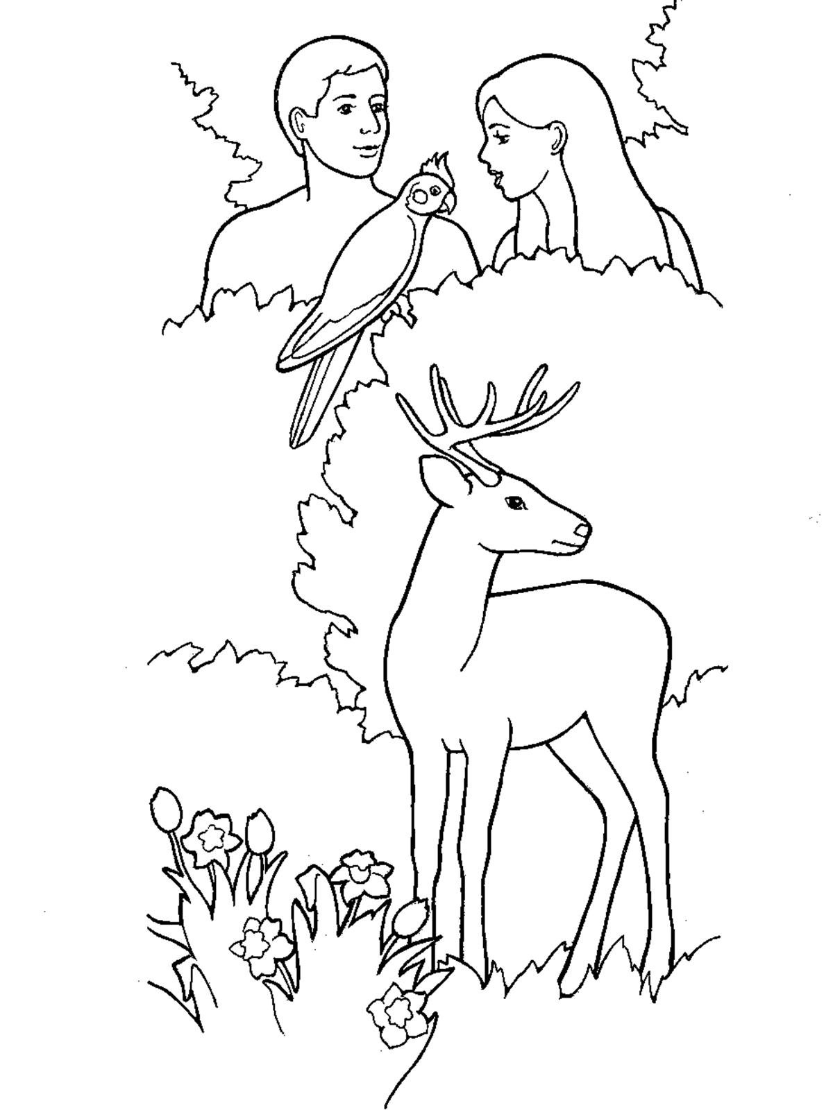 Creation Adam And Eve In The Garden Of Eden