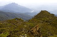 Mt. Tambuyukon