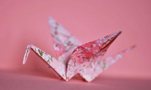 vika trana origami