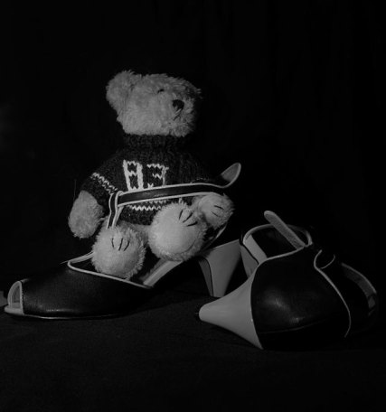 sko enbildomdagen 2014 130104