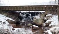 vinter-IMG_5782