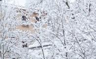 snö-hus
